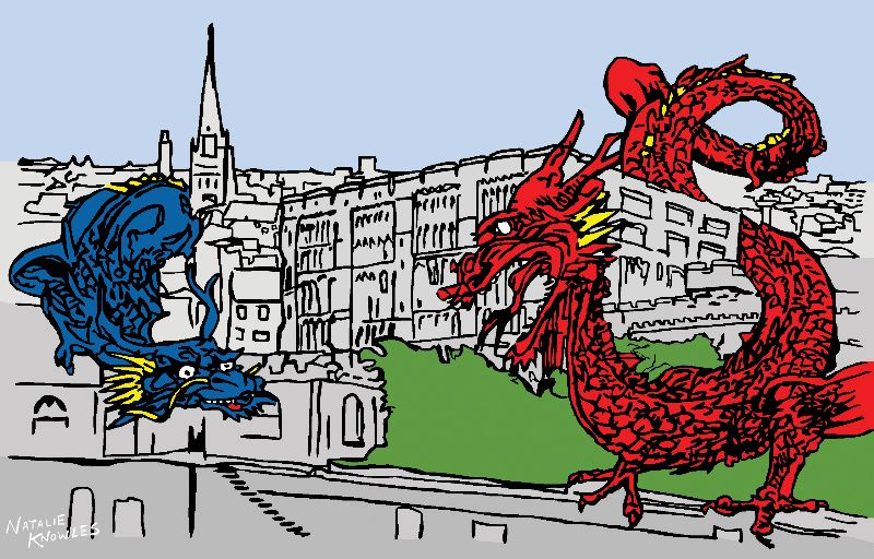 Norwich Dragons