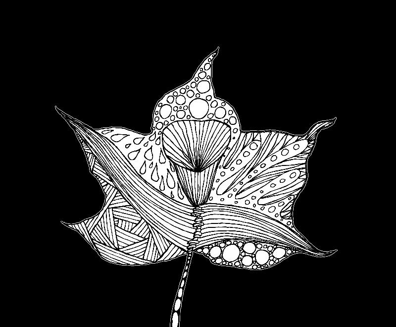 Drawing of black leaves 1