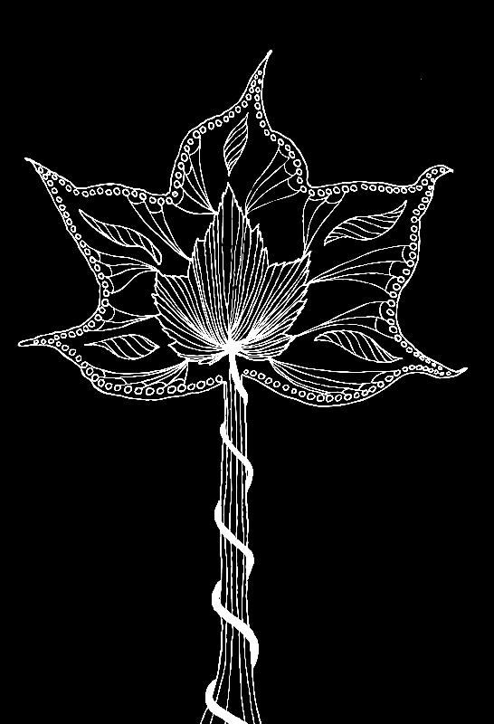 Surreal leaf in black