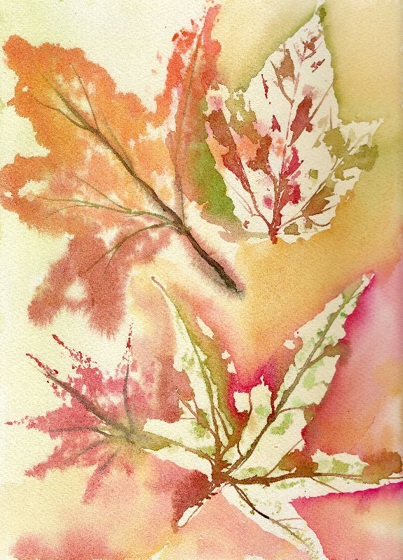 WatercolourAutumn Leaves