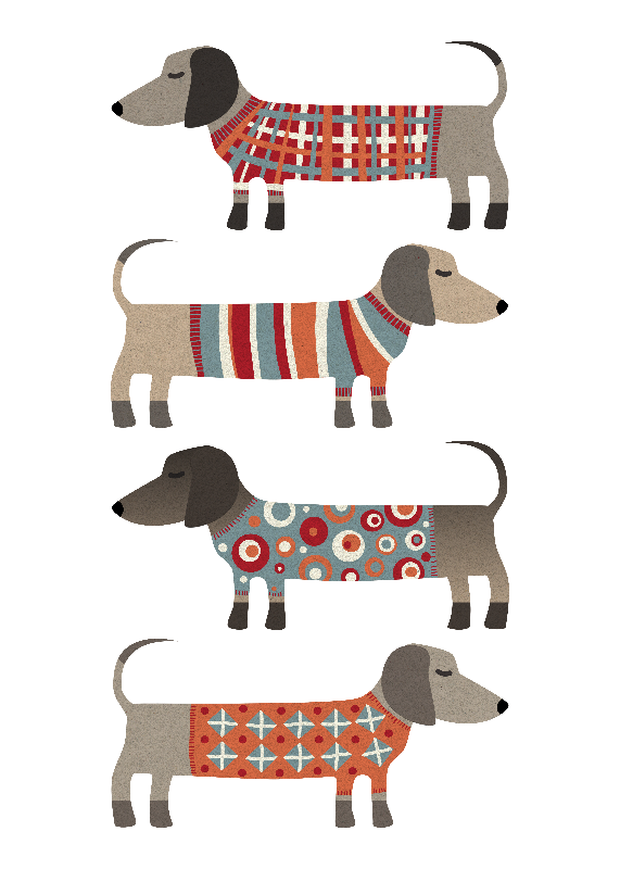 Sausage Dogs in Sweaters