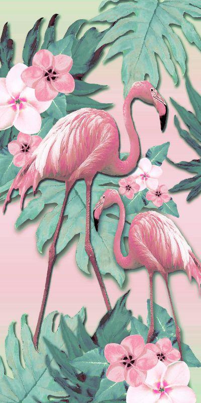 Flamingo Frangipani