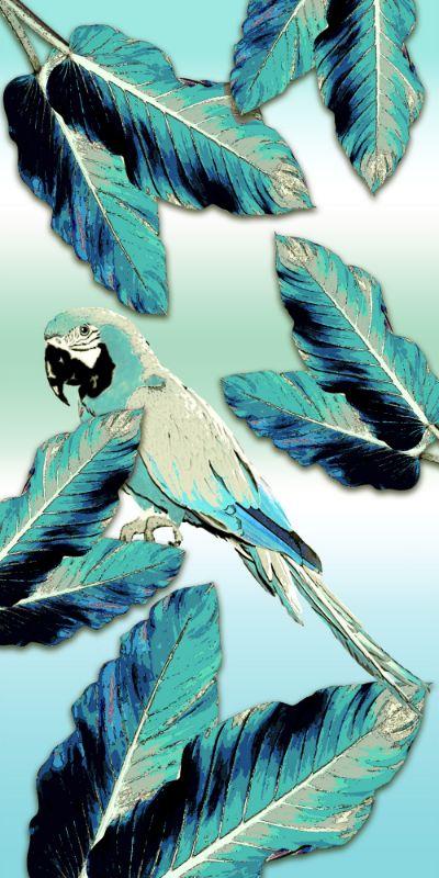 Amazonas Aqua Parrot