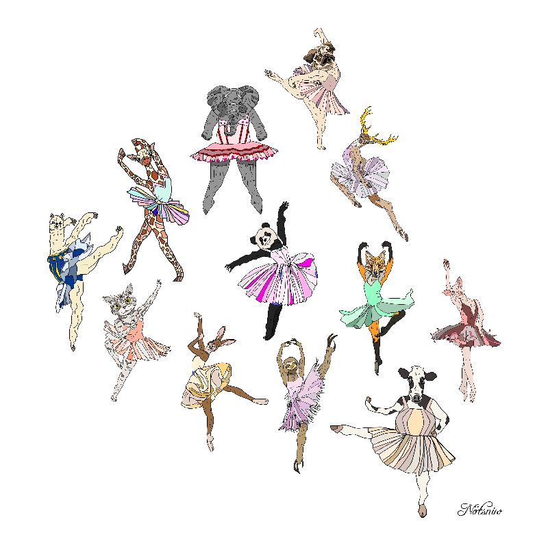 Animal Ballerinas