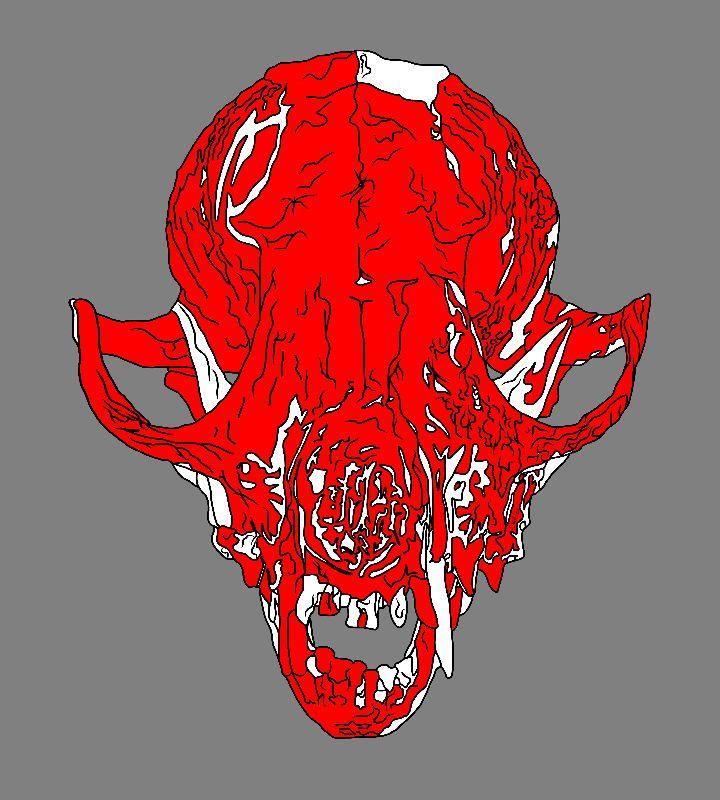 Bloody Fox Skull