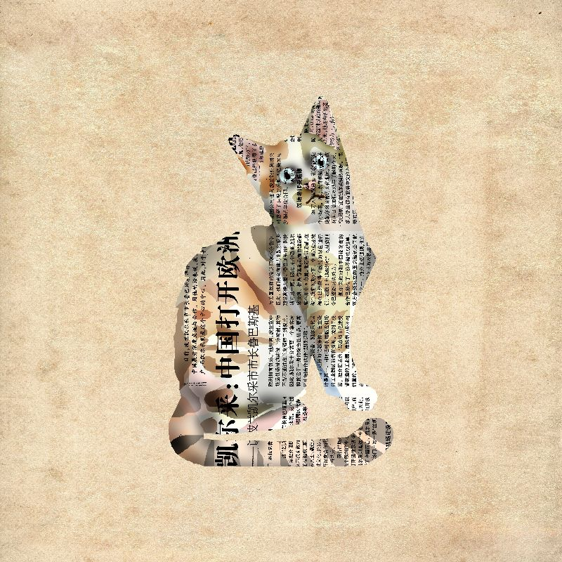 Cat Newspaper Collage