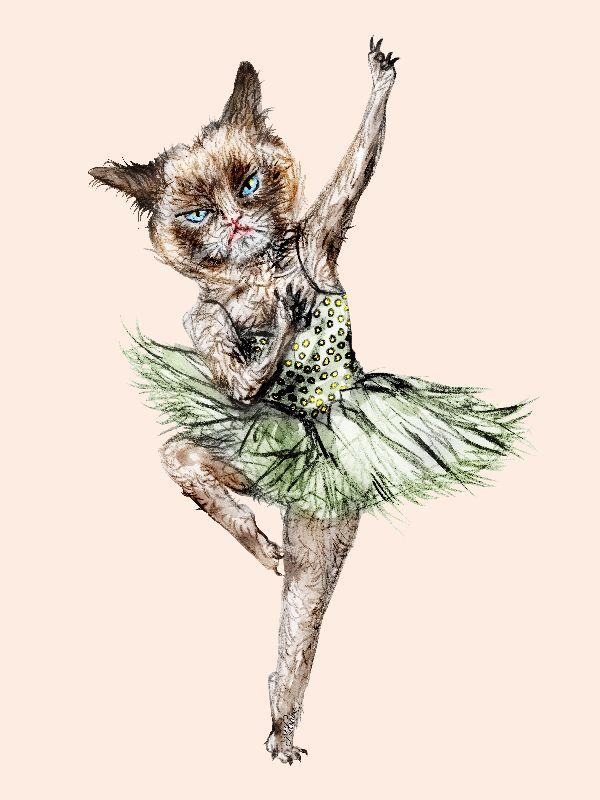 Grumpy Cat Ballerina