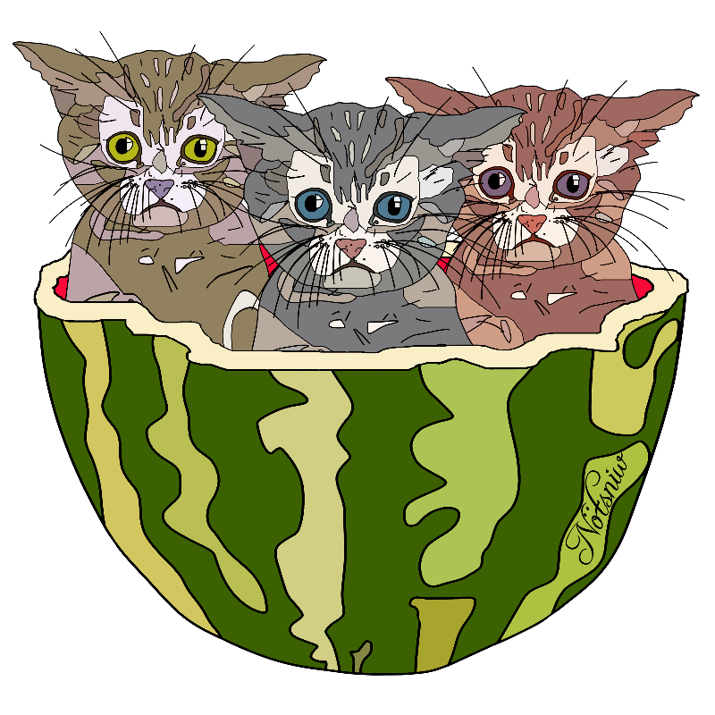 Watermelon Kittens
