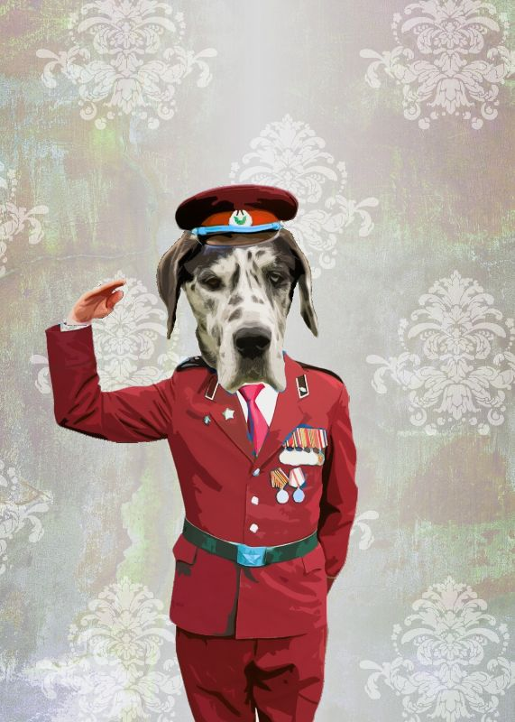 Funny dog in red uniform