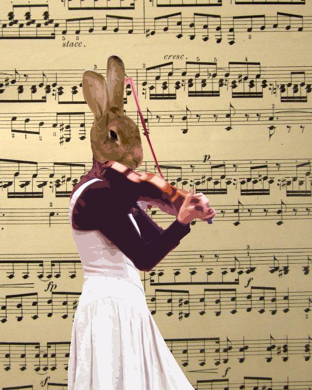 Funny musician animal