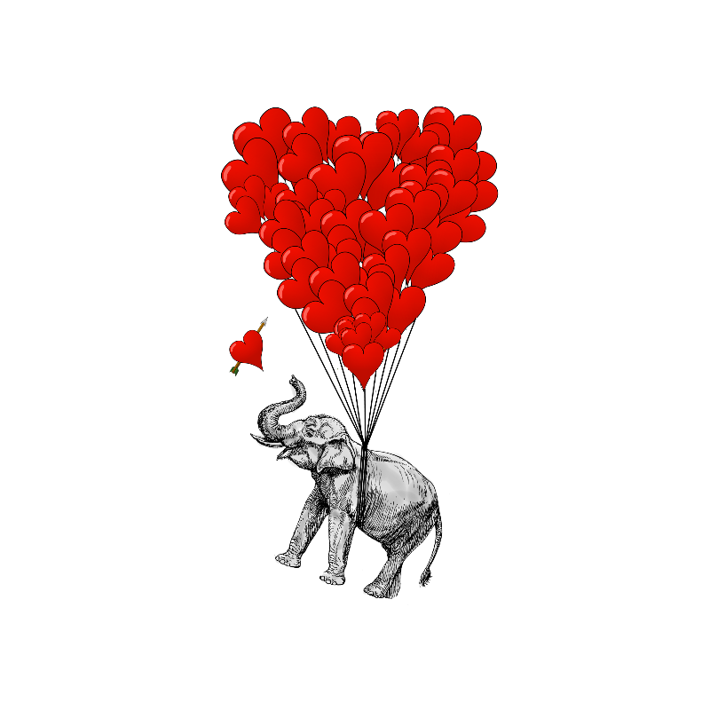 Romantic funny elephant
