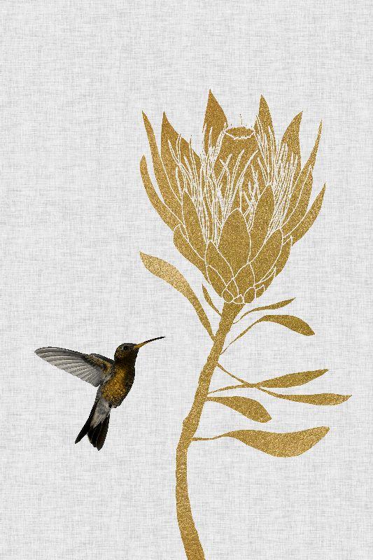 Hummingbird  Flower I