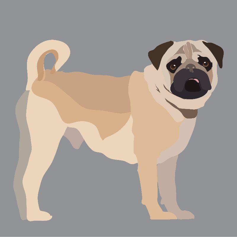 Its a Pug Life