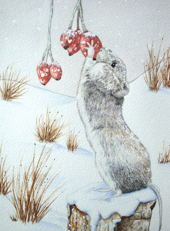 Cute woodmouse snow scene