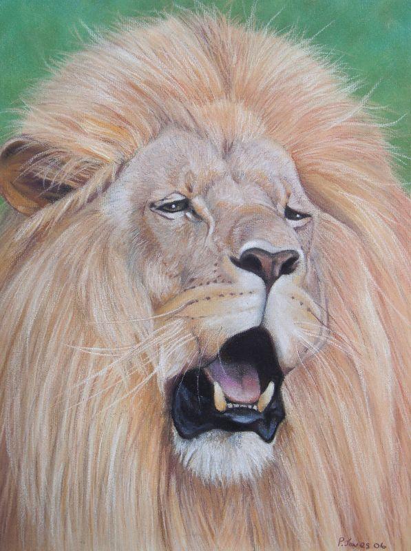 I Am King Lion Portrait
