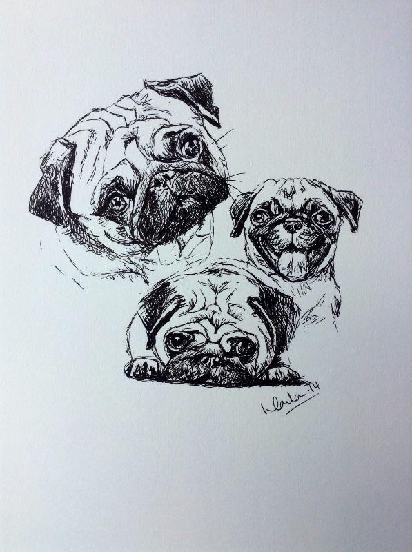 Pug trio