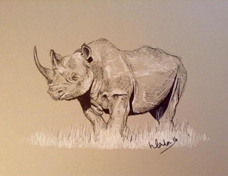White rhino rhino