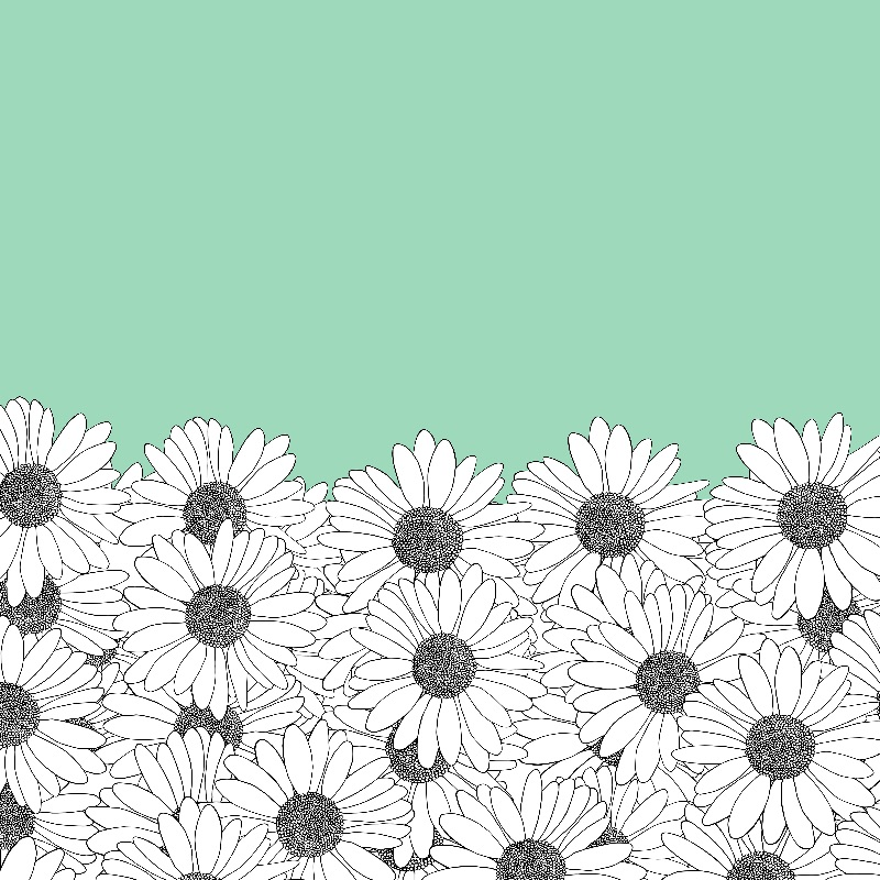Daisy Mint Boarder