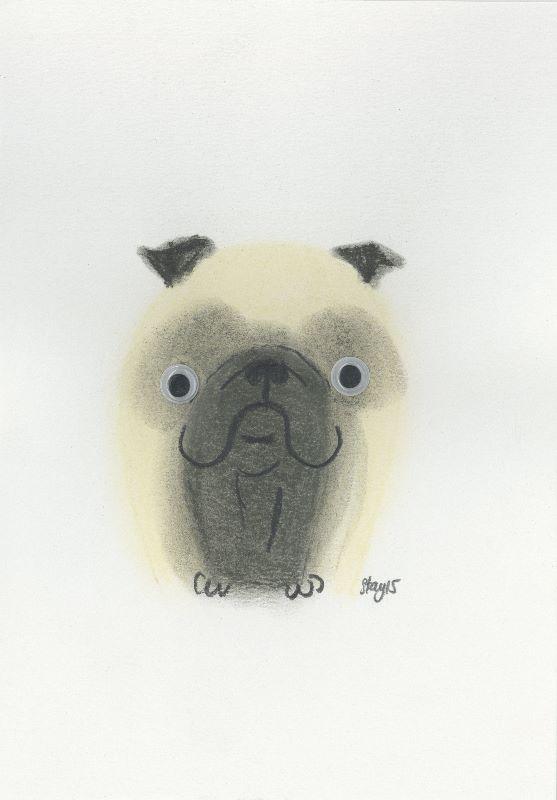 Boggle Pug 2