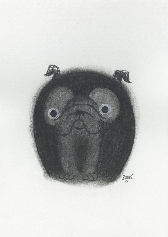 Boggle pug