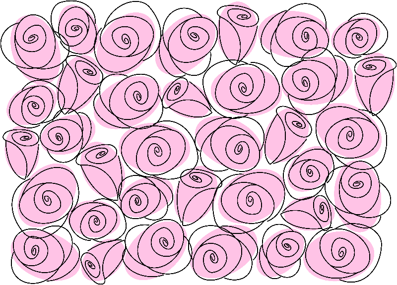 Roses Pale Pink
