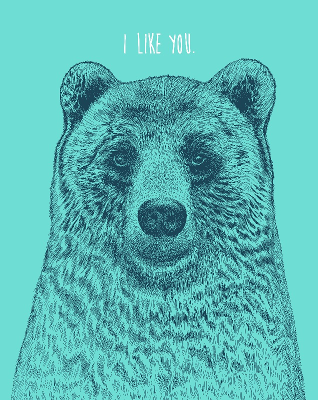 I Like You Bear