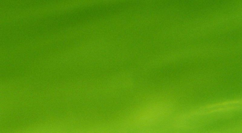 Simply Green 7