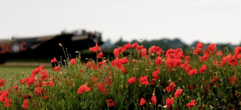 Rememberance Lancaster