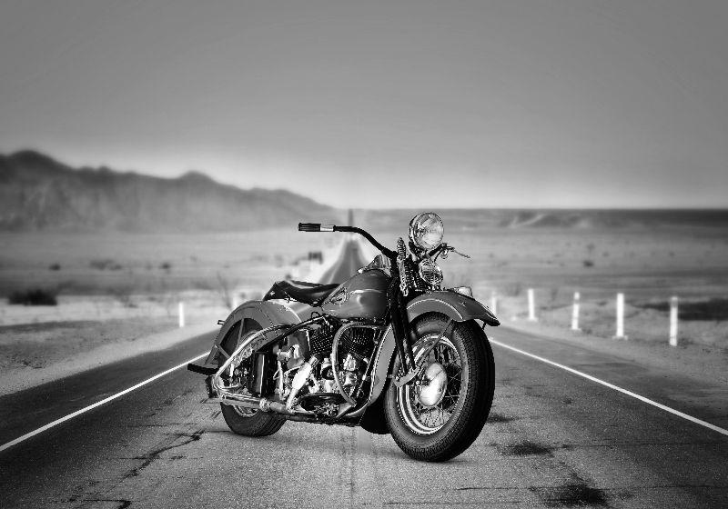 Desert Road Hog
