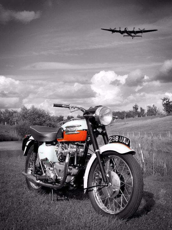 The 59 Bonnie