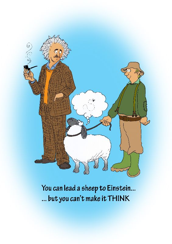 You can lead a sheep