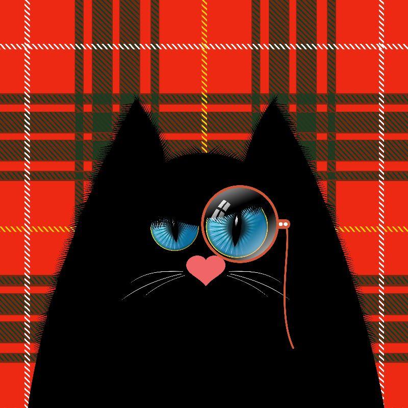 Professor Cranky Cat