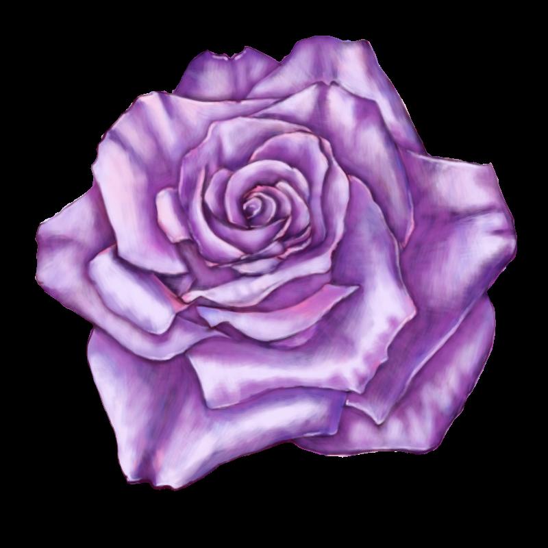 rose 40