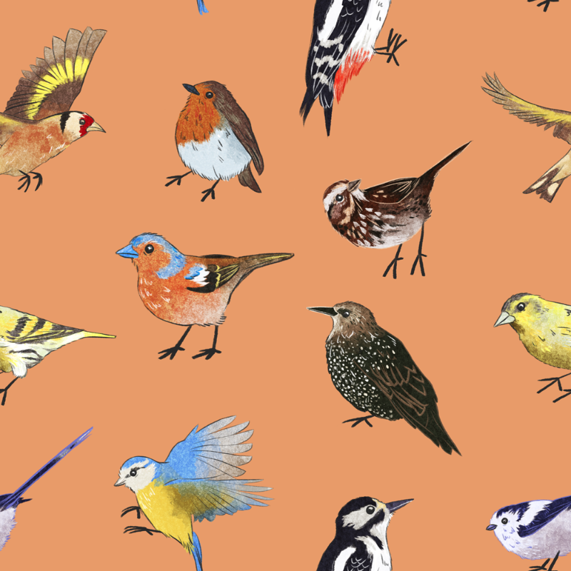 British Bird Pattern