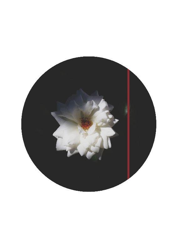 Atmospheric Flower