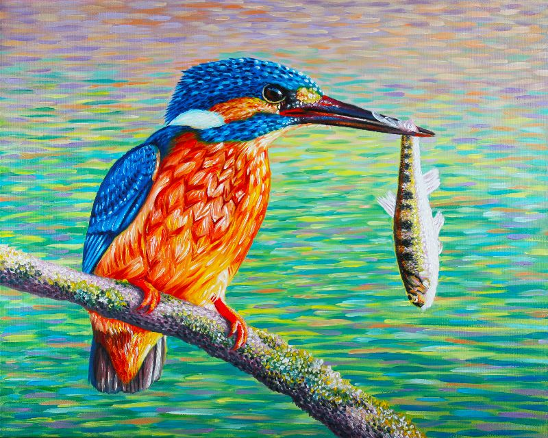 Birds Kingfisher and Fish