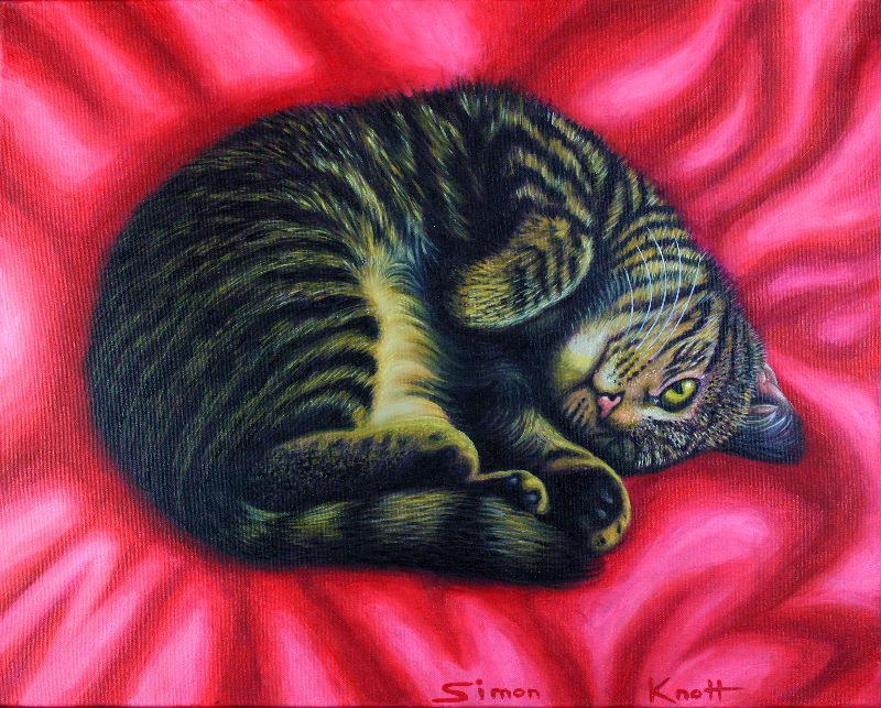 Cute Cat Curl on Red Rug