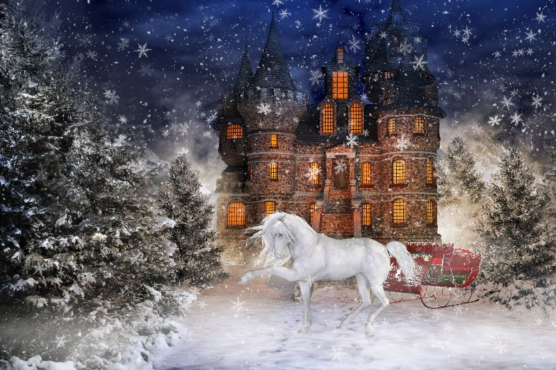 Christmas time 4
