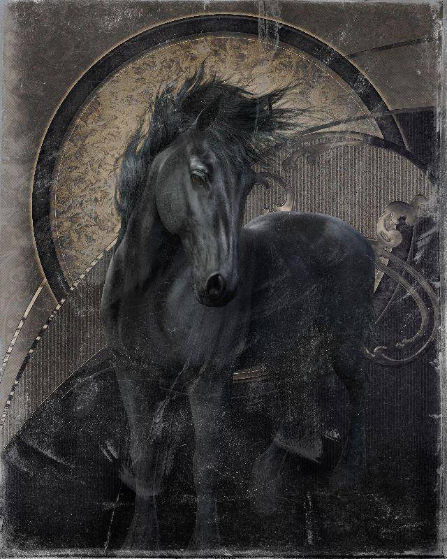 Gothic friesian horse