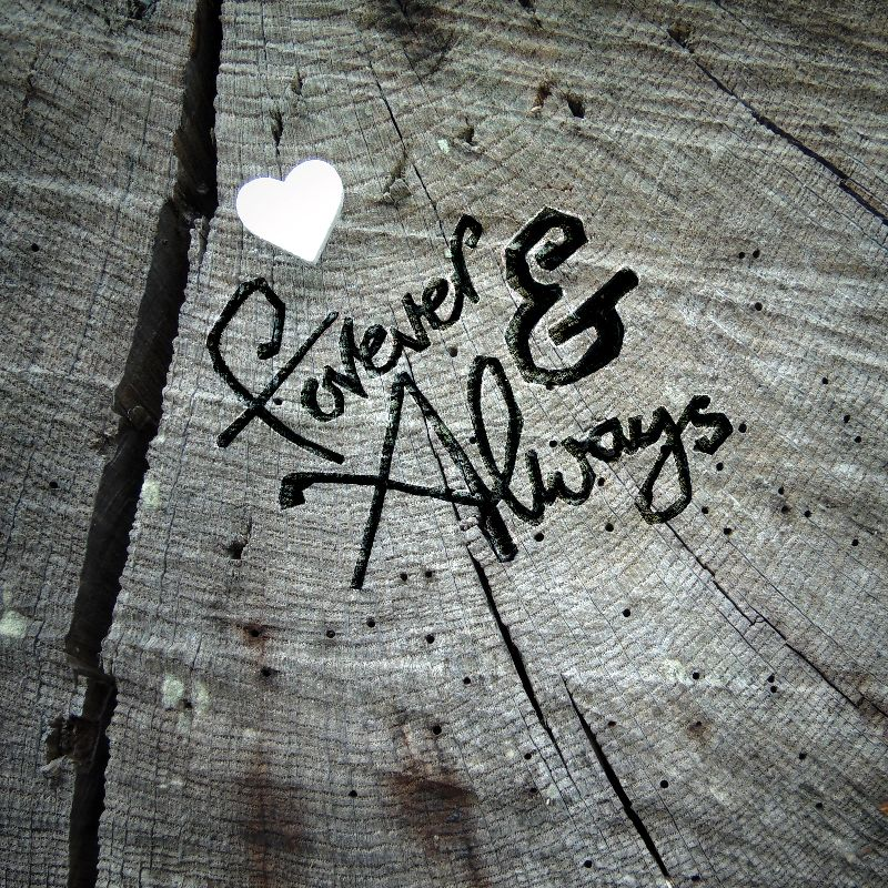 Forever and Always 2