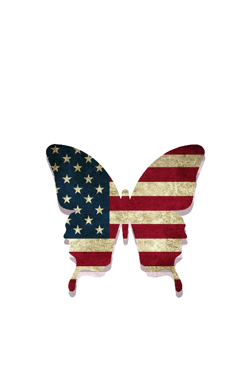 Butterfly Stars  Stripes