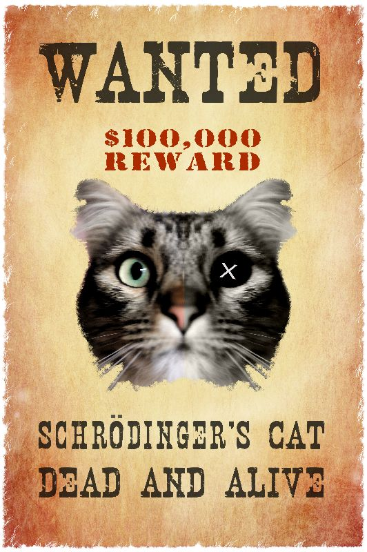 wanted Schrdingers cat