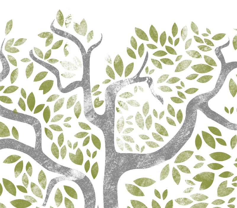 Raising Branches