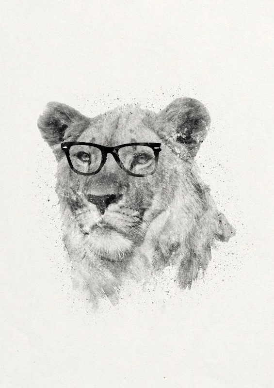 Wild Hipster
