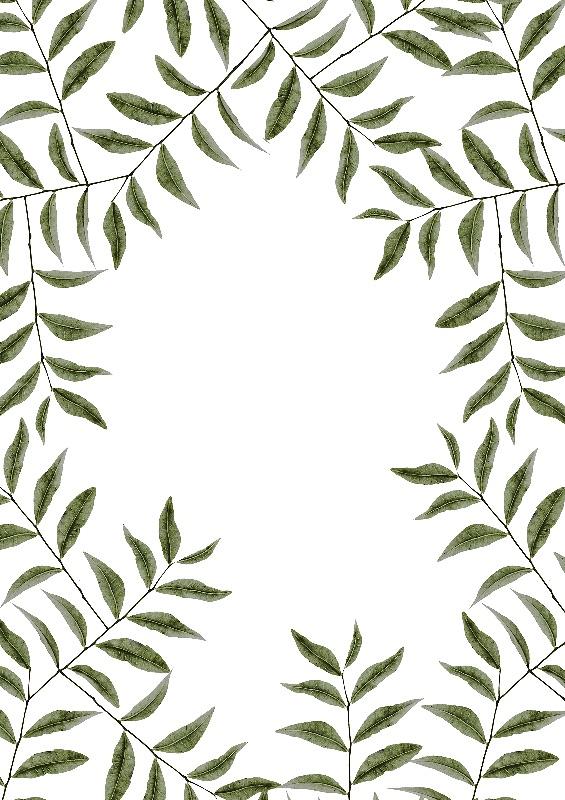 nature leaf dynamics