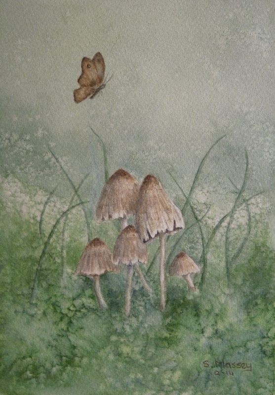 Beautiful Mushrooms