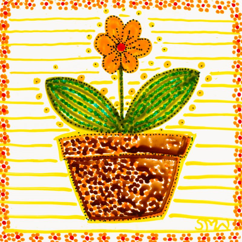 Orange Flower in a Pot