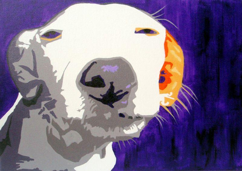 Nosy Dog