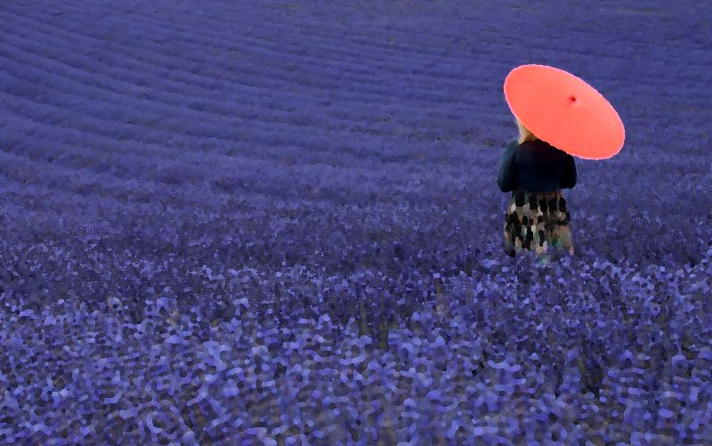 Lavinder Fields