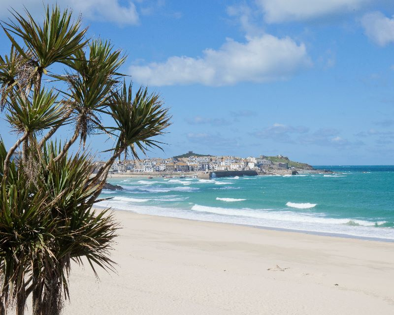 St Ives Tropical